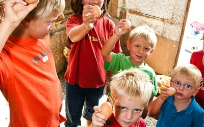Kinder-Bauernhof Pfaffenwinkel