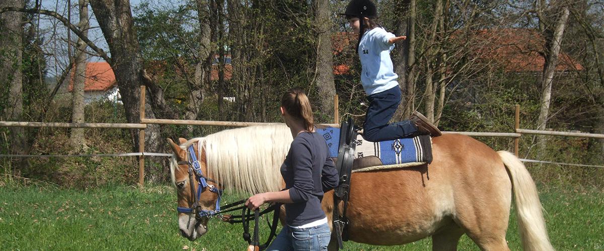 pferdekunststueckchen