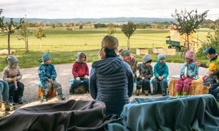 Waldtag und Naturworkshops